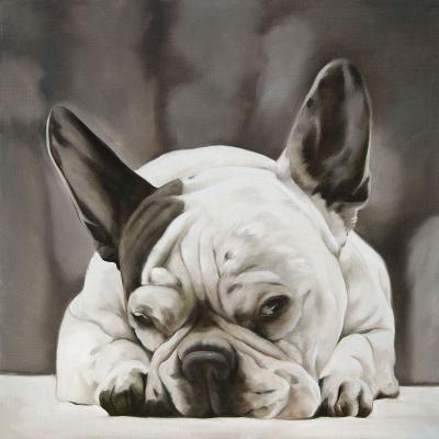 chien bulldog français -peinture sur toile