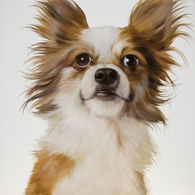 Chien Chihuahua en peinture