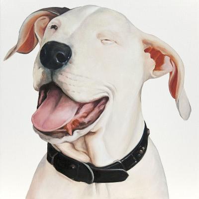peinture sur toile Pitbull