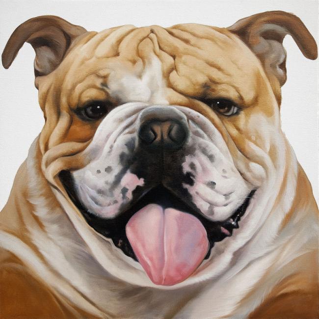bulldog anglais peinture originale sur toile sur lookisfree. Black Bedroom Furniture Sets. Home Design Ideas